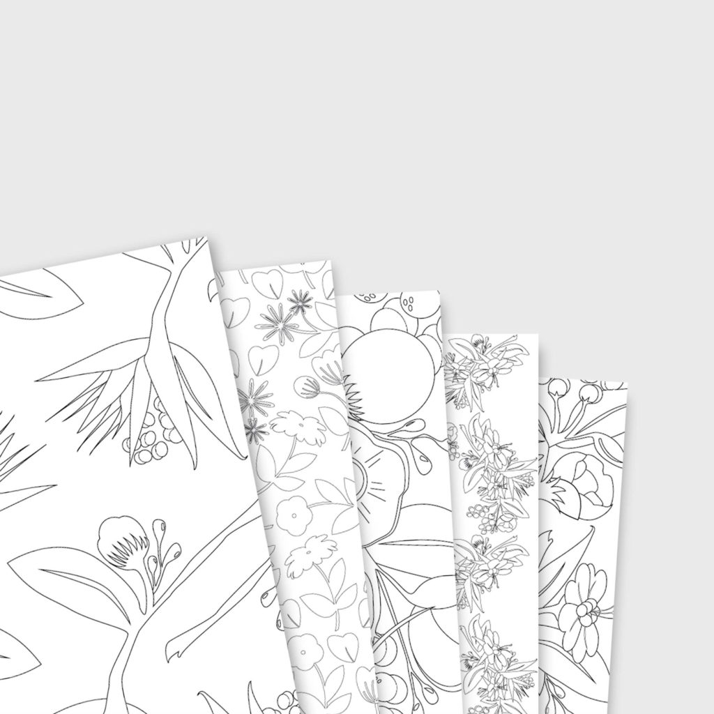 Cahier de coloriage collection Peony