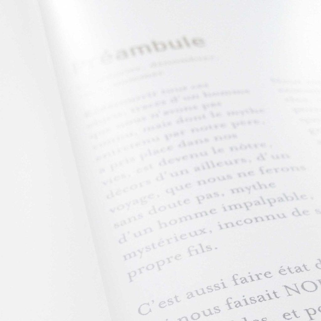 Livre Mystère du caméléon